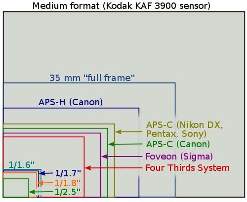Chart of Sensor Sizes